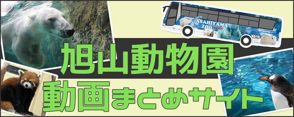 旭山動物園動画まとめサイト
