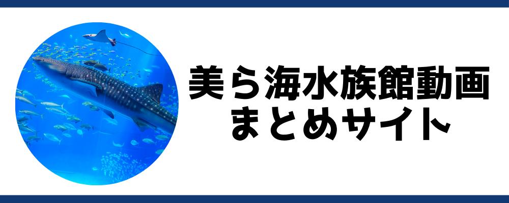 美ら海水族館動画まとめサイト